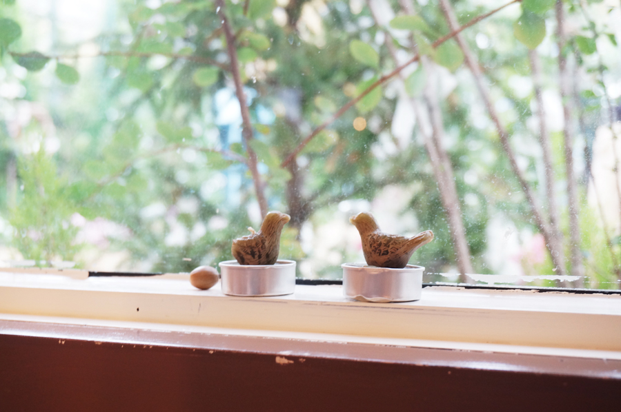 スワンズカフェミントブルー春日井市植物園