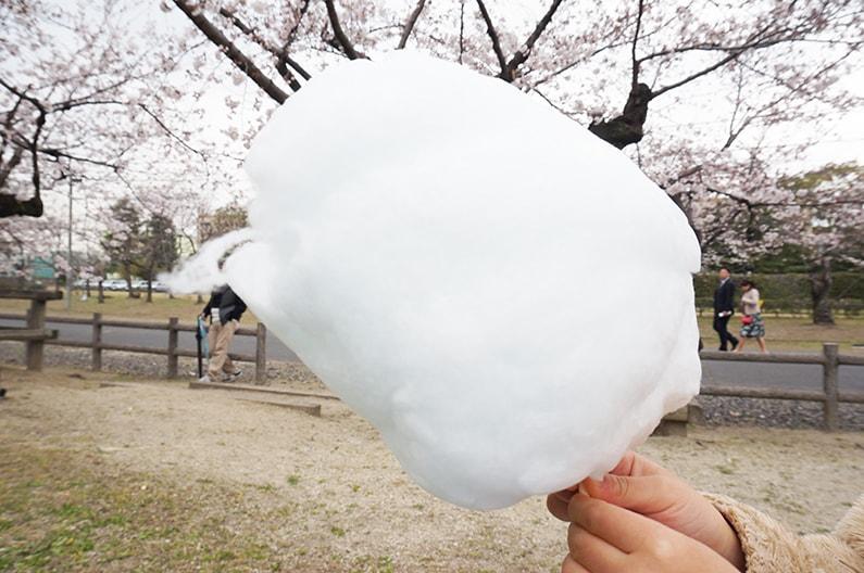 春日井市の王子製紙の王子桜まつり
