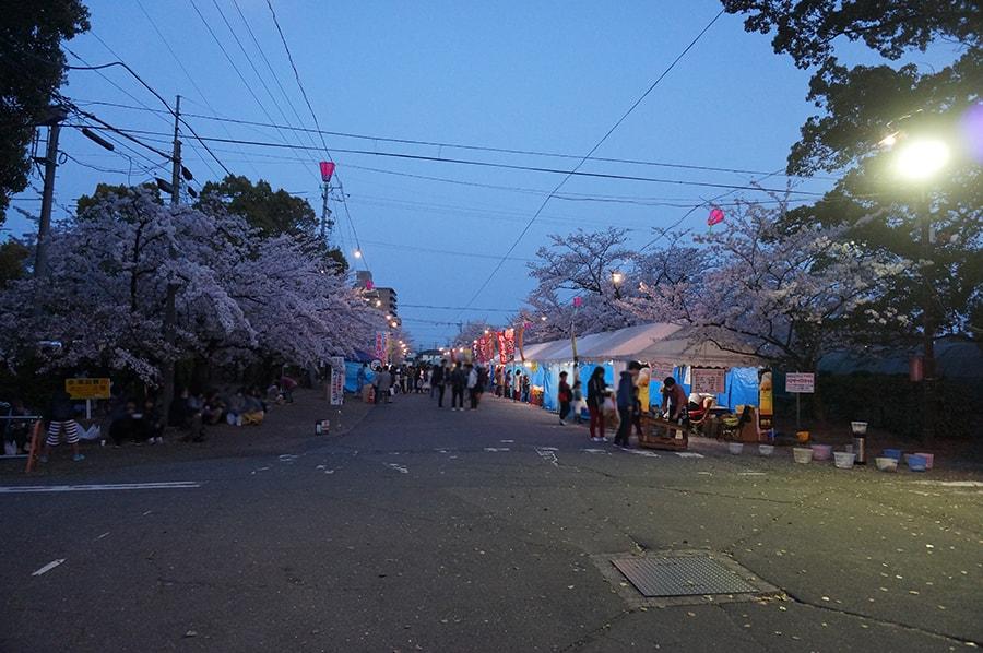 春日井市のお花見、王子桜まつり